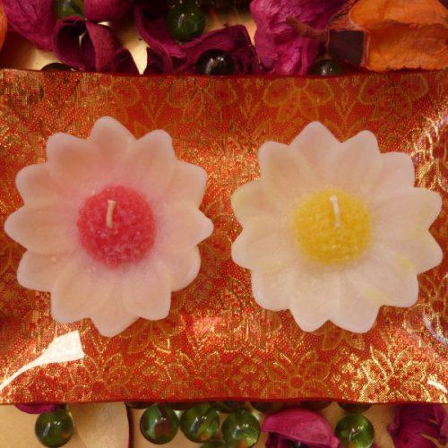 lumanari decorative floare de musetel